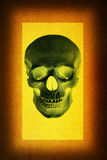 Human skull in the design background Royalty Free Stock Image