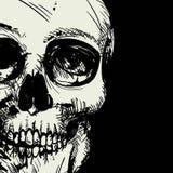 Human Skull Drawing Stock Photo