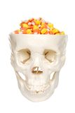 Human skull filled with candy corn Stock Images