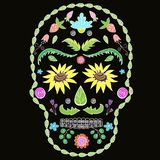 Human skull with flower elements for religion or halloween design.  image vector illustration