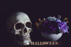Human skull beside flower vase and wooden alphabet. Halloween on wooden floor in halloween day on black background Stock Images