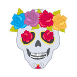 Human Skull and Flower Wreath. Isolated Cranium Royalty Free Stock Image