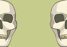 Human skull or grim reaper deaths head illustration. Vector Stock Images