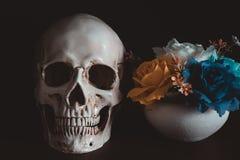 Human skull in Halloween day. Human skull beside flower vase on wooden floor in Halloween day on black background Stock Image