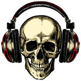 Human skull in headphones acoustic Stock Photos