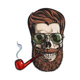 Human skull with hipster beard, wearing aviator sunglasses, smoking pipe Stock Photos