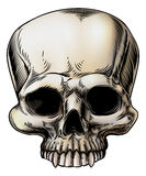 Human skull illustration Royalty Free Stock Photography
