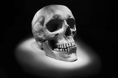 Human skull isolated. On the black background Royalty Free Stock Photography