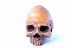 Human skull isolated on white background. Hum skull isolated on white background royalty free stock photo