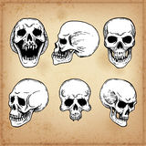 6 Human skull. Line art. Royalty Free Stock Images
