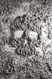 Human skull made of ash Royalty Free Stock Photography
