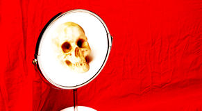 Human skull in a mirror Royalty Free Stock Photography