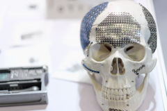 The skull model royalty free stock photography