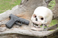 Human skull model and gun on log Stock Images