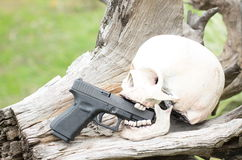 Human skull model and gun on log Stock Photo