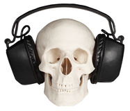 Human skull with music headphones on white Stock Images
