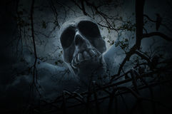 Human skull with old fence over dead tree, crow, moon and cloudy Stock Photography
