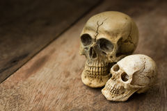 Human skull on old wood background. Royalty Free Stock Photos