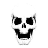 Human skull with open mouth in sketch style Stock Photo