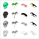 A human skull, a palm tree, Ambystoma mexicanum, a tukan bird. Country Mexico set collection icons in cartoon black Stock Photo