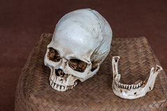 Human skull place on wicker basket Royalty Free Stock Photos