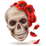 Human skull and poppy flowers. Royalty Free Stock Images