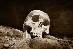 Human skull  in prisoner Royalty Free Stock Image