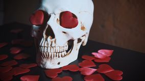Human skull with red heart . Concept for Valentine`s Day. AIDS. Human skull with red heart . 4k stock footage