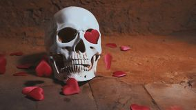Human skull with red heart . Hearts fall on the skull slow motion. Concept for Valentine`s Day. AIDS. Human skull with red heart . Hearts fall on the skull slow stock video