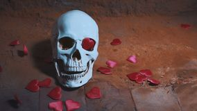 Human skull with red heart . Hearts fall on the skull slow motion. Concept for Valentine`s Day. AIDS. Human skull with red heart . Hearts fall on the skull slow stock video footage