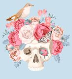 Human skull with roses Stock Photos