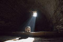 Human skull in the scary underground. Spooky old castle cellar royalty free stock images