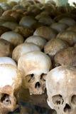 Human Skull Series 02 Stock Images