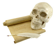 Human skull with shabby scroll Stock Images