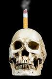 Human skull smoking Stock Photography