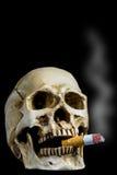 Human skull smoking Stock Images