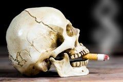 Human skull smoking Stock Photos