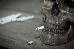 Human skull smoking a cigarette,Dead because of smoking. stock photos