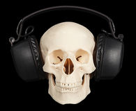 Human skull with stereo headphones on black Stock Images
