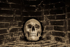 Human skull in stove Royalty Free Stock Photography
