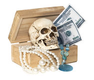 Human skull in treasure box Stock Photos