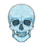 Human skull tribal style.Tattoo blackwork. Vector hand drawn illustration. Boho Royalty Free Stock Photo