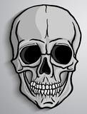 Human Skull vector Stock Images