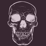 Human Skull Vector Art. Hand drawn illustration. Human Skull Vector Art. Detailed hand drawn illustration of skull on background. Tattoo style skull art. Grunge Royalty Free Stock Images