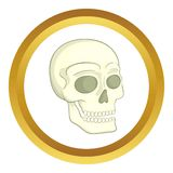 Human skull vector icon Royalty Free Stock Images