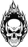 Human skull. Vector illustration of a human skull with flames Stock Photo