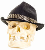 Human Skull Wearing a black jazzy hat Stock Photography