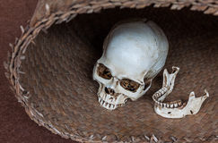 Human skull in wicker basket Royalty Free Stock Photos