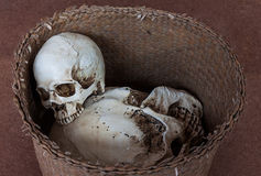 Human skull in wicker basket Royalty Free Stock Images
