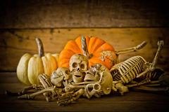 Human skull on wood background ,Skeleton and pumpkin on wood ,Happy Halloween background ,Halloween pumpkins Stock Photography
